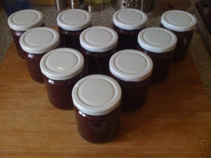 Hedgerow Chutney done