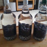 Sloe Gin, just started
