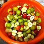Chopped apples