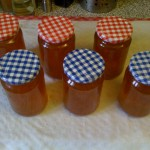 Completed Marmalade